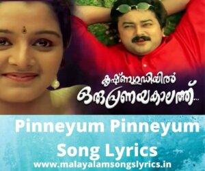Pinneyum Pinneyum Song Lyrics