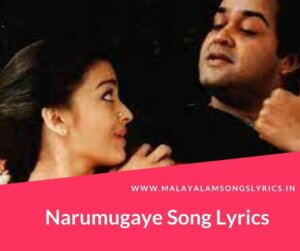 Narumugaye Song Lyrics