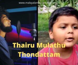 Thairu Mulathu Thondattam song lyrics