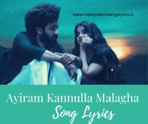 Ayiram Kannulla Malagha Song Lyrics