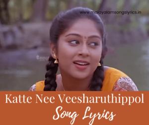 Katte Nee Veesharuthippol Lyrics